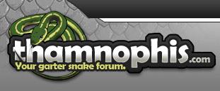 Garter Snake Forum