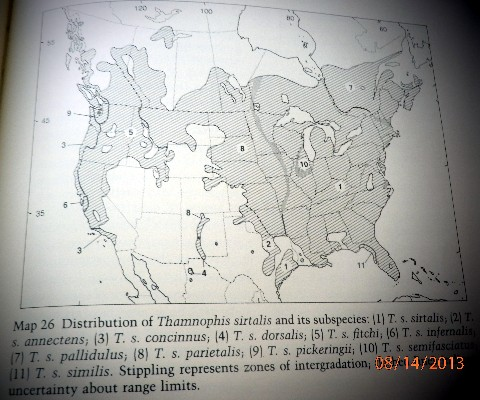 T_s_s_range_map2