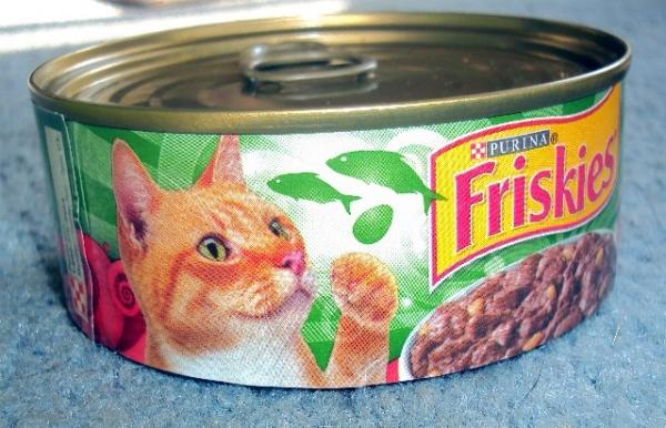 cat_food_prank